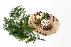Choinki gałąź, tort, nowy rok dekoracja na bielu Kreatywnie pojęcie, przestrzeń dla teksta, logo Mieszkanie nieatutowy Fotografia Royalty Free