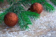 Choinki zieleń rozgałęzia się, pomarańczowe piłki, zima snowbound wo Fotografia Stock