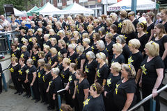 Choir members singing Winchester England UK Royalty Free Stock Images