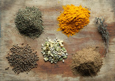 Choise of spices Royalty Free Stock Images