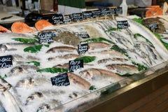 Choise von Fischen auf Markt Stockbild