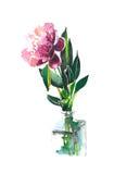 Choisissez la pivoine rose dans une illustration de main d'aquarelle de bouteille Image libre de droits