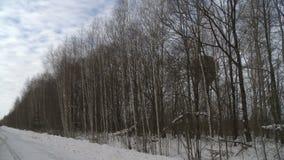 Choisissez le ballon à air chaud débarquant lentement la vue d'hiver clips vidéos