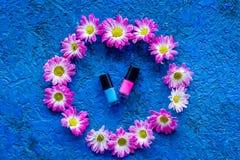 Choisissez le vernis à ongles pour la manucure Bouteilles de poli coloré sur la vue supérieure de fond bleu Photos stock