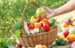 Choisissez les fruits et légumes frais et organiques droits Images libres de droits