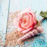 Choisissez rose avec un coquillage et un sable Images libres de droits
