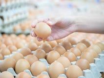 Choix de l'oeuf de poulet du paquet sur le marché Photographie stock