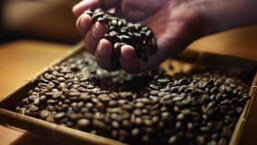 Choix des meilleurs grains de café bien choisis pour rectifier banque de vidéos