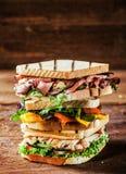 Choix des sandwichs grillés savoureux photographie stock libre de droits