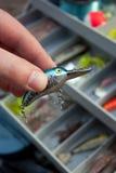 Choix du bon attrait de pêche Photographie stock libre de droits