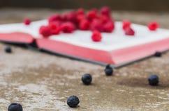 Chokeberres with raspberries Stock Photos