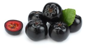 Chokeberry με το φύλλο που απομονώνεται στο άσπρο υπόβαθρο Μαύρο aronia Στοκ εικόνα με δικαίωμα ελεύθερης χρήσης