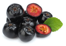 Chokeberry με το φύλλο στο άσπρο υπόβαθρο Μαύρο aronia Στοκ φωτογραφία με δικαίωμα ελεύθερης χρήσης