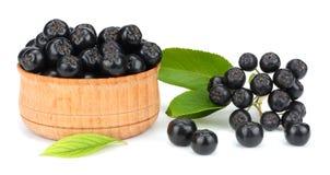 Chokeberry με το φύλλο στο ξύλινο κύπελλο που απομονώνεται στο άσπρο υπόβαθρο Μαύρο aronia Στοκ Εικόνα