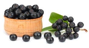 Chokeberry με το φύλλο στο ξύλινο κύπελλο που απομονώνεται στο άσπρο υπόβαθρο Μαύρο aronia Στοκ Φωτογραφίες