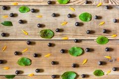 Chokeberry μούρων Aronia μαύρα, πέταλα calendula και φύλλα στο ξύλινο υπόβαθρο στο αγροτικό ύφος Στοκ εικόνες με δικαίωμα ελεύθερης χρήσης