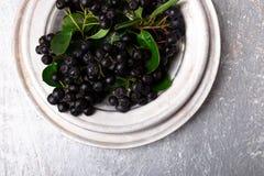 Chokeberry στο ασημένιο κύπελλο μετάλλων στο γκρίζο υπόβαθρο Μούρο Aronia με το φύλλο Τοπ όψη διάστημα αντιγράφων Στοκ φωτογραφία με δικαίωμα ελεύθερης χρήσης