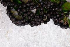 Chokeberry στο γκρίζο υπόβαθρο Μούρο Aronia με το φύλλο Τοπ όψη διάστημα αντιγράφων Στοκ εικόνες με δικαίωμα ελεύθερης χρήσης