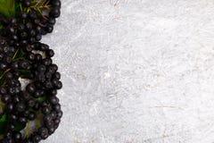 Chokeberry στο γκρίζο υπόβαθρο Μούρο Aronia με το φύλλο Τοπ όψη διάστημα αντιγράφων Στοκ φωτογραφίες με δικαίωμα ελεύθερης χρήσης
