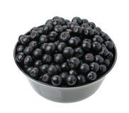 Chokeberry Lizenzfreies Stockfoto