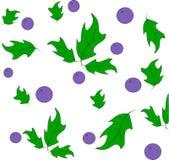chokeberry Royalty-vrije Stock Afbeelding