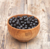 Chokeberry (Aronia ) Royalty Free Stock Photos