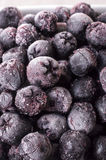 Chokeberry congelato, Aronia Immagine Stock