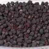 Chokeberry royalty free stock photos