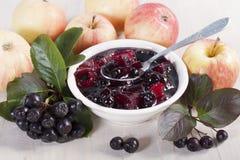 Chokeberry e mele dell'inceppamento Immagine Stock Libera da Diritti