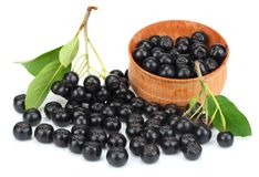 Chokeberry with leaf in wooden bowl on white background. Black aronia royalty free stock photo