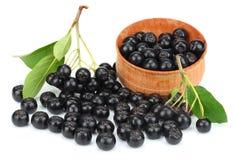 Chokeberry met blad in houten kom op witte achtergrond Zwarte aronia royalty-vrije stock foto