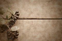 Chokeberry noir sur le fond en bois Photo stock