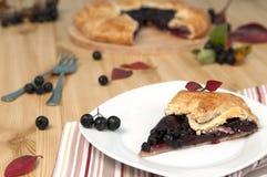 Chokeberry pie Stock Images