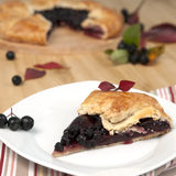 Chokeberry pie Stock Photography