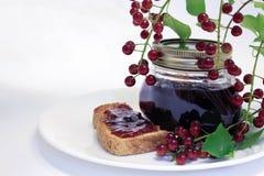 Chokecherry Jam and Toast Stock Photography