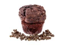 Choklad Chip Muffin Royaltyfri Bild