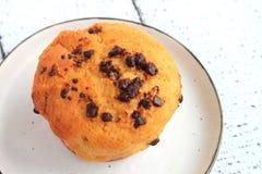 Choklad Chip Muffin Arkivbild
