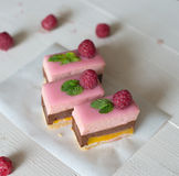 Choklad- & hallonkaka Royaltyfria Bilder