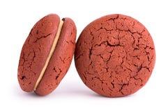 Choklad kaka på en vit bakgrund Arkivfoton