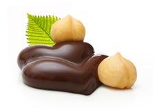 Choklad med muttrar Fotografering för Bildbyråer
