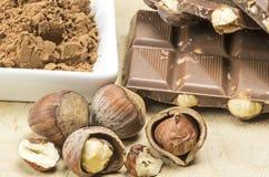 Choklad och hasselnötter Royaltyfri Fotografi