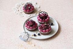 Choklad och svart vinbär Mini Tarts Arkivfoto