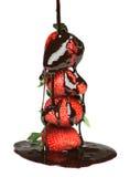 choklad som smälts över hällande jordgubbar arkivfoto