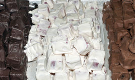Choklad täckte geléer Royaltyfri Fotografi