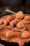 choklad vita isolerade tryfflar royaltyfri bild