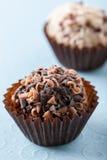 choklad vita isolerade tryfflar Arkivbilder