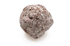 Chokladbränd mandelvit Arkivbilder