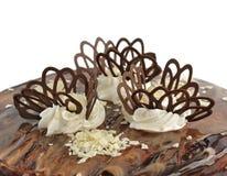 Chokladcake på den vita bakgrunden Arkivfoto