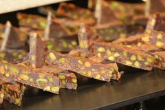 Chokladefterrätt med muttrar Royaltyfria Foton