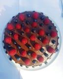 Chokladfruktkaka royaltyfri bild